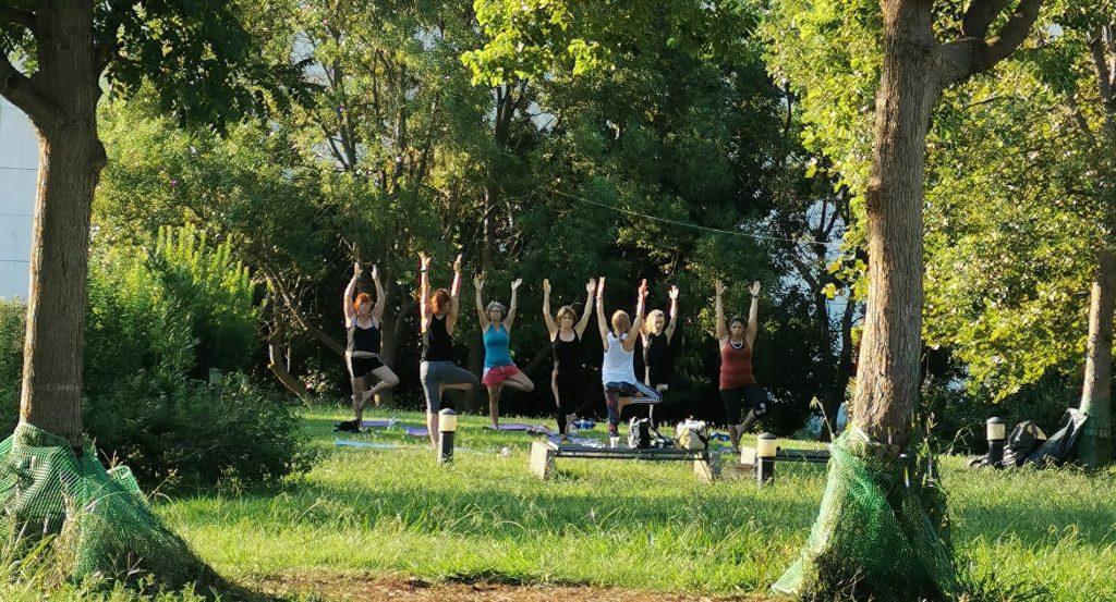 yoga classes by megaron centre